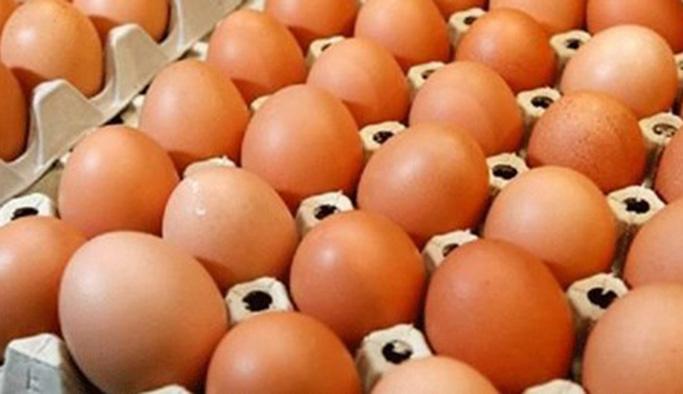 Yumurta için ezber bozan araştırma