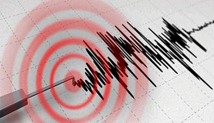Muğla'da 4,3 şiddetinde deprem