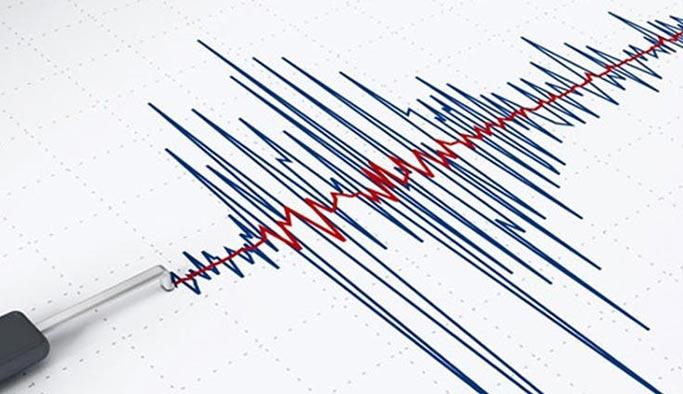 Bodrum'da gece yarısında korkutan deprem