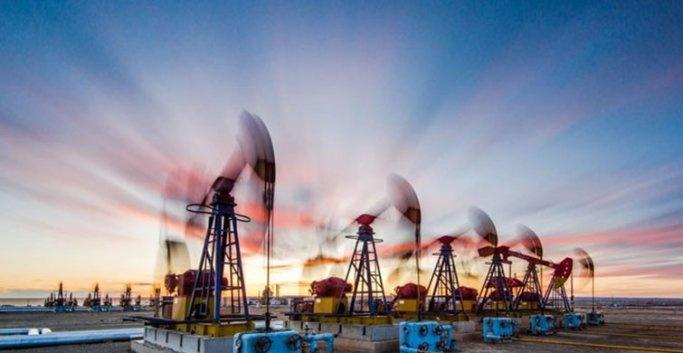 Petrol ve Gaz Havzası'nda Üretim Rekor Düzeyde: 1,76 Milyon Köylü İstihdam Edildi