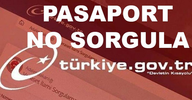 e-Devlet Ehliyet ve pasaport numarası sorgulama