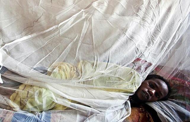 Nijerya'da sıtmadan 101 kişi öldü