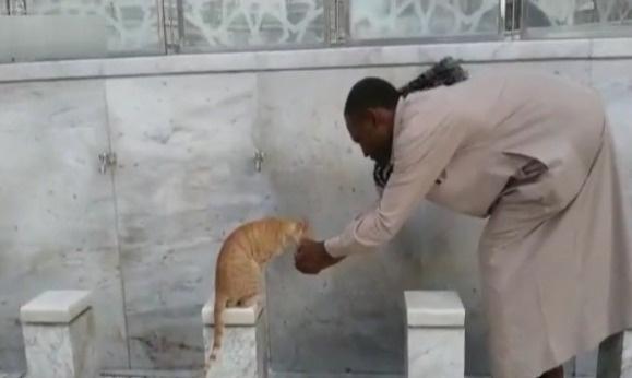 Mekke'de hayran bırakan şefkat eli | VIDEO