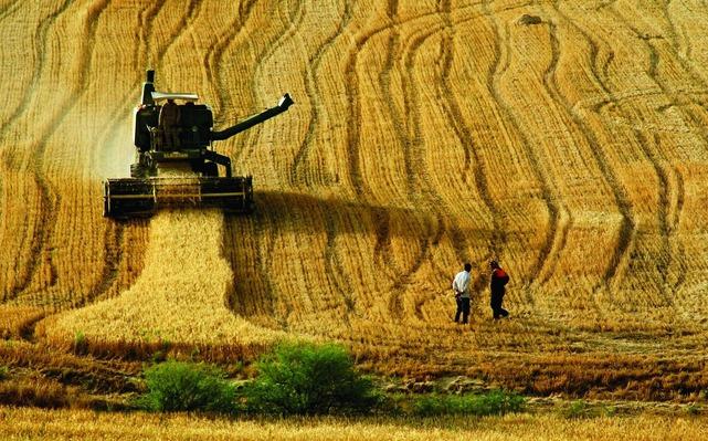 Eğitim, turizm ve tarıma 114 milyon avroluk hibe