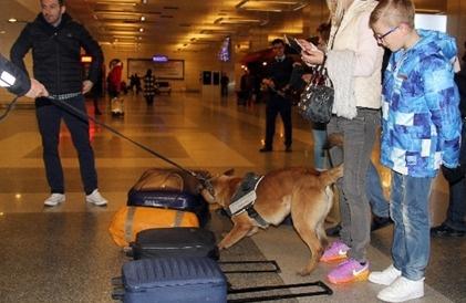 Havalimanlarında güvenlik alarmı