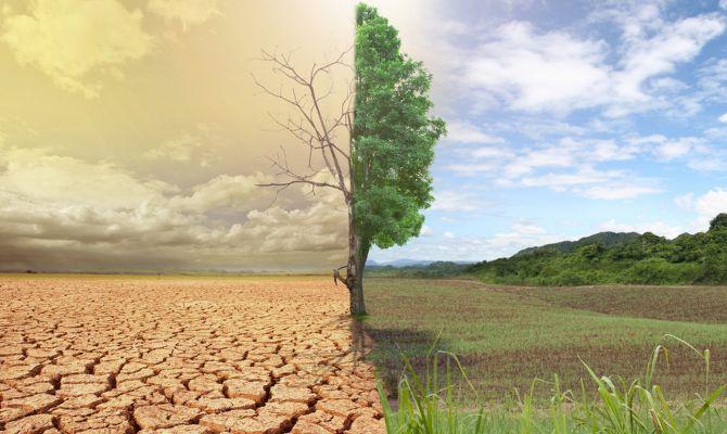 Oxford: İklim değişikliğine bağlı ölümler artacak