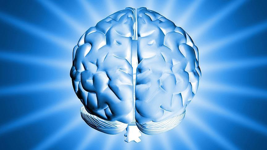 'Bor'un hafızaya etkisi ortaya çıktı