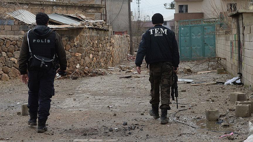 İdil operasyonu bitti: 114 PKK'lı öldürüldü