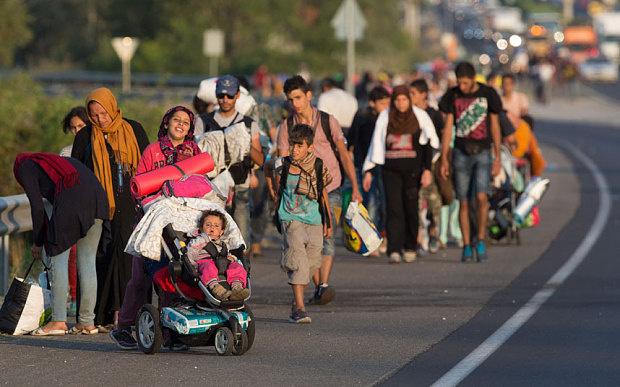 Sığınmacılara laiklik dersi