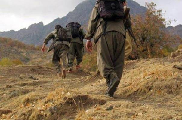 PKK'lı 8 terörist teslim oldu