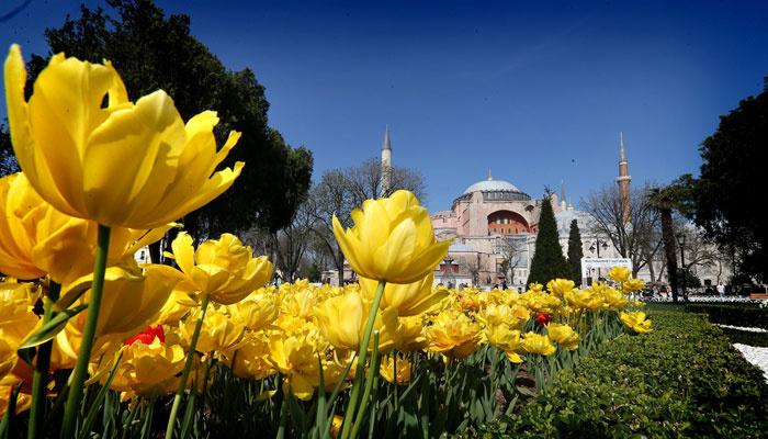 İstanbul'da lale zamanı | FOTO