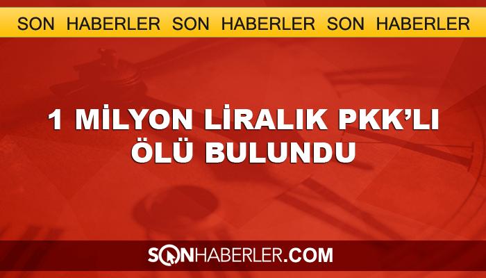 1 milyon liralık PKK'lı ölü bulundu