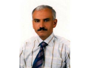 Dut ağacından düşen fizik profesörü hayatını kaybetti