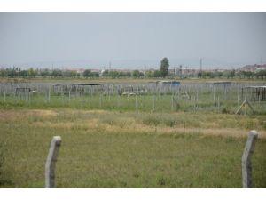 Birinci derece tarım arazisine hastane planına tepki yağıyor