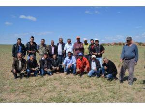 Sarıkaya'da 20 bin dekar tarım alanı doludan zarar gördü