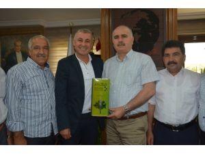 MZO Başkanı Metin: Portakal iç piyasada tüketilmezse ağacında çürüyecek