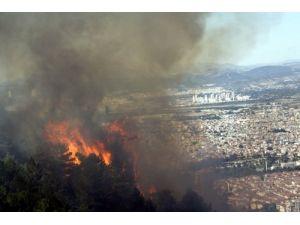 Uludağ ormanlarını yangınlardan korumak için özel önlem alınıyor