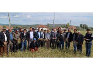 MHP'li Durmaz, Yozgat'ta doludan zarar gören tarım alanlarını inceledi