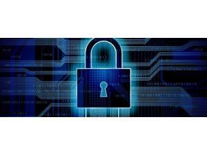 Yılda 378 milyon kişi siber suç kurbanı