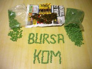 Bursa polisi bin 500 adet uyuşturucu hap ele geçirdi