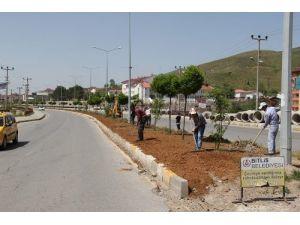 Belediyenin peyzaj ve yol yapım çalışması devam ediyor