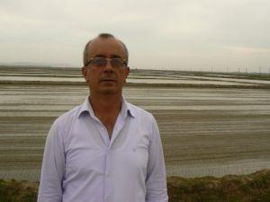 İpsala'da çeltik ekimine yağmur engeli