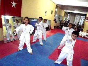 Duman: Taekwando dövüşme değil öncelikle savunma sporudur