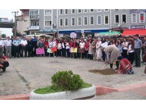 Tirebolu'da 'silaha hayır' eylemi