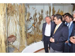 Sultansazlığı Kuş Müzesi açıldı