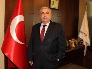 Dünya zeytinyağı piyasası Türkiye'ye emanet
