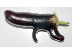 Silah şeklindeki patlıcan şaşırtıyor