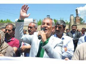 HDP'li Çelik, hükümeti eleştirdi