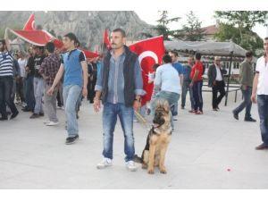 Tokat'ta bayrağa saygı yürüyüşü yapıldı