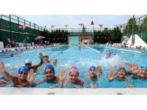 Osmangazi havuzları yaza hazır