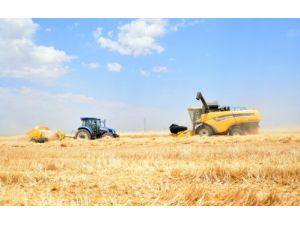 Şanlıurfalı çiftçiler tarla gününde traktörleri tanıdı