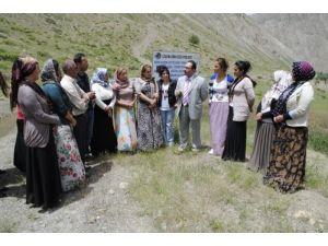 Hakkari'de kadın çiftçilere arı dağıtıldı