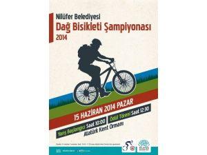 Nilüfer, Dağ Bisikleti Şampiyonası'na hazırlanıyor