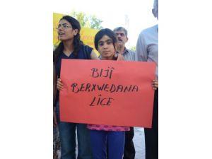 BDP, Lice'de yaşananları protesto etti