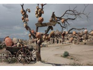 Testi ve çanak ağacı turistlerin ilgisini çekiyor
