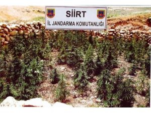Siirt'te kaçak malzeme ele geçirildi