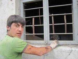 Boşaltılan binalar köpeklerin ve madde bağımlıların suç evi haline geldi