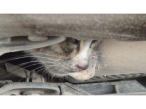 Motor bölümüne sıkışan kedi için itfaiye seferber oldu