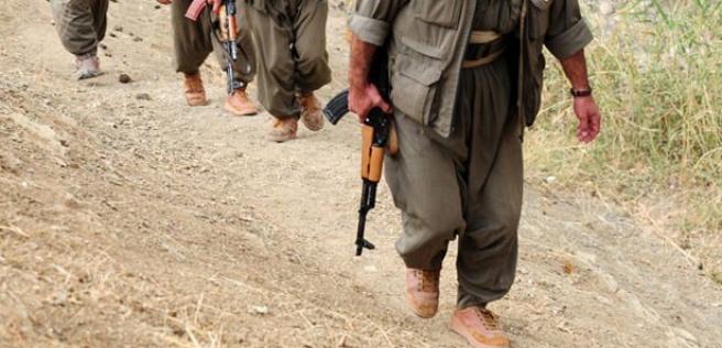 Terör örgütü PKK'nın son çırpınışları