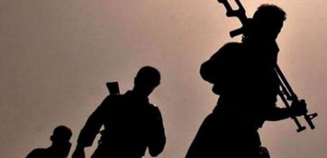 PKK'lı teröristler Şırnak'ta 2 kişiyi kaçırdı