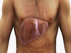Karaciğer Yağlanmasına Karşı Uzman Tavsiyeleri