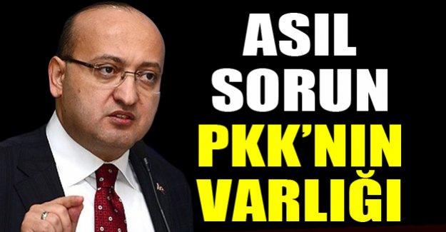 Akdoğan: Asıl sorun, PKK'nın silahlı varlığı ve saldırılarıdır