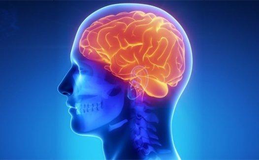 Alzheimer hastalığı , tedavi edilebilir mi ?