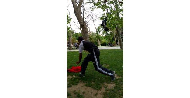 Gezi Parkı'nda karga saldırısı!