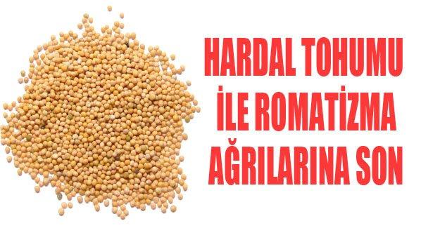 Hardal tohumu ile romatizma ağrılarından kurtulun