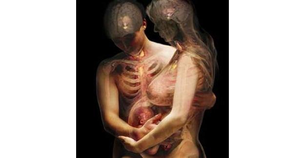 İnsan vücudunun gizemi
